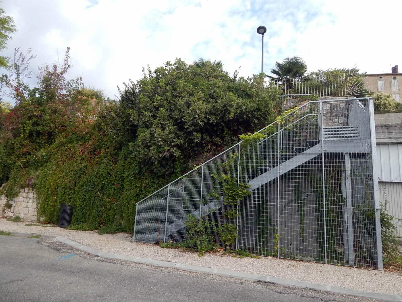 Escalier et végétation